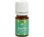 Angelica Essential Oil - 5ml ESSENTIAL OIL